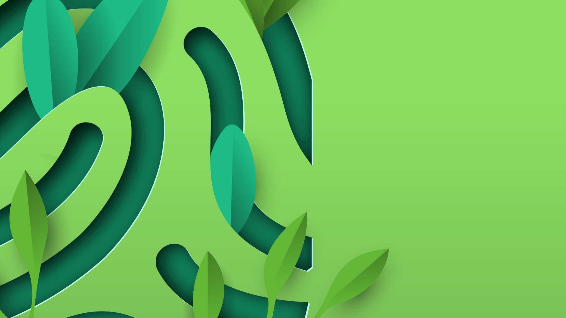 NCC goes green!